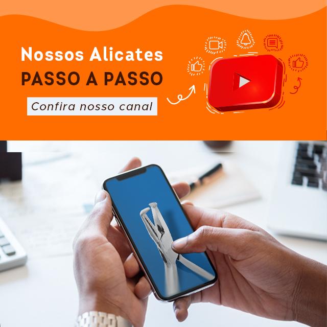 Youtube 1Sem/2021